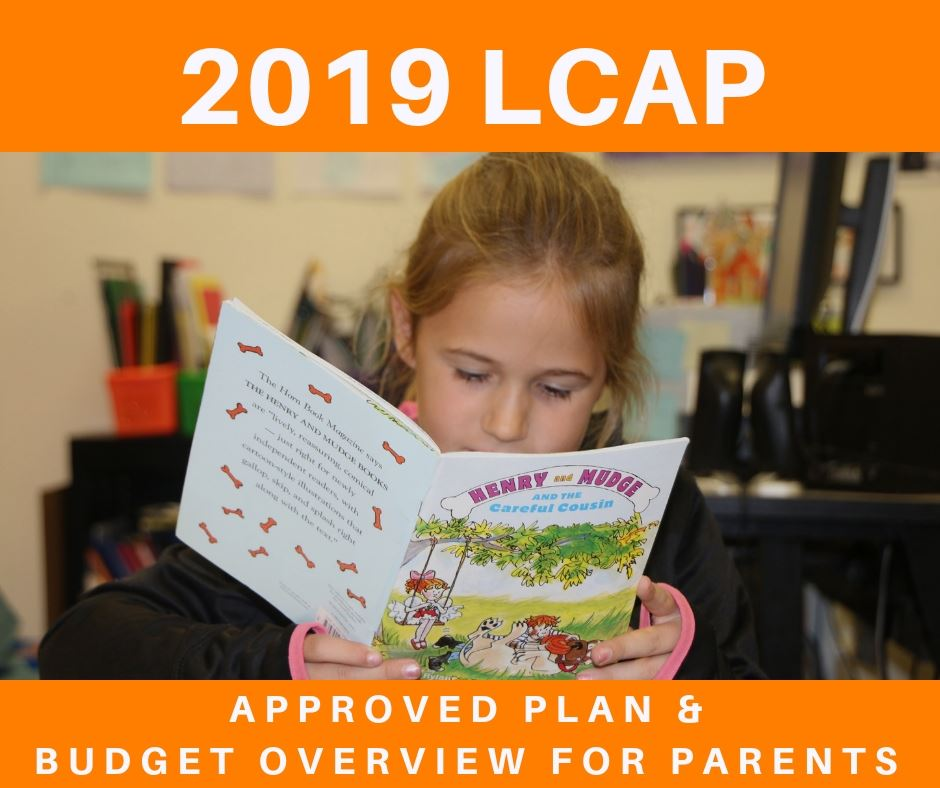 2019 LCAP Documents