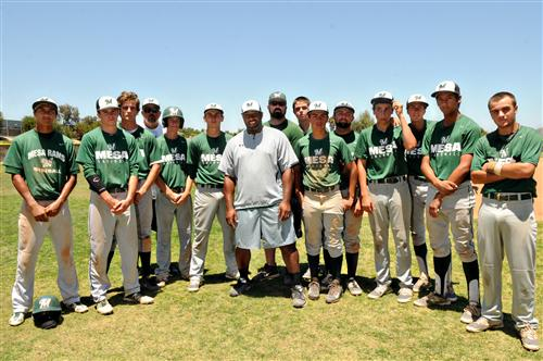 Palm Springs Baseball Tournament 2015 | Autos Post